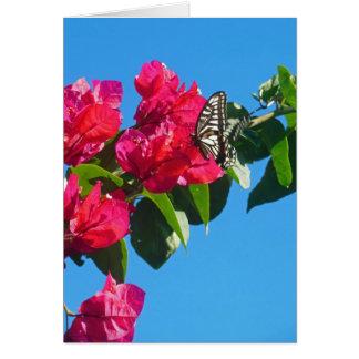 Papillon asiatique de machaon carte de vœux