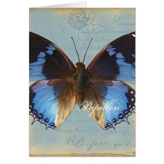 Papillon Blau Karte