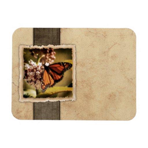 Papillon de monarque vintage magnet souple