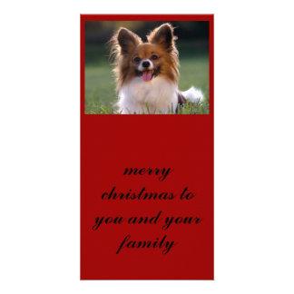 Papillon, Joyeux Noël à vous et votre famille Cartes Avec Photo