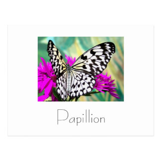 Papillon Postkarten-Entwurf Postkarte