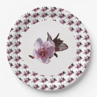 Pappteller - Kirschblüte