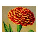 Paquet français vintage de graine de fleur carte postale