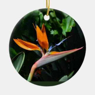 Paradiesvogel Verzierung Keramik Ornament