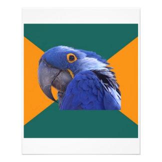 Paranoides Papageien-Vogel-Ratetier Meme Flyerbedruckung