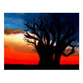 Pari Chumroo Baobob Baum-Postkarte