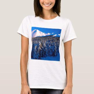 Park Kenai Ains Schlucht-Nebenfluss Alaska T-Shirt