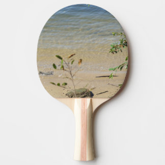 Parramatta Fluss-Strand-Klingeln Pong Paddel Tischtennis Schläger