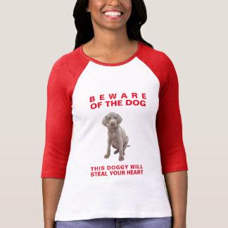 Passen Sie vom Hund-Diesem Hündchen stiehlt Ihr T-Shirt