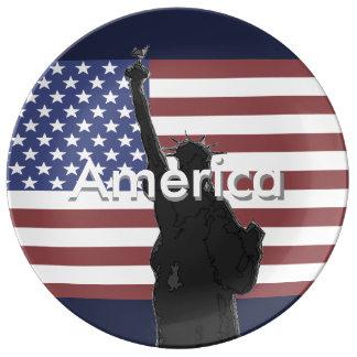 Patriotische Flagge-Sammelplatte USA Teller