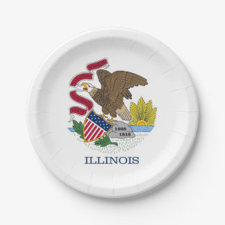 Patriotischer Pappteller mit Flagge von Illinois