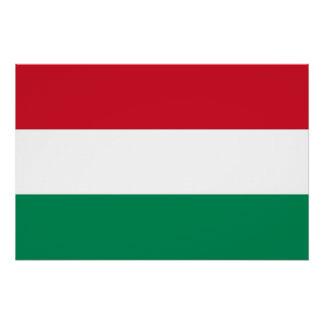 Patriotisches Plakat mit Flagge von Ungarn Poster