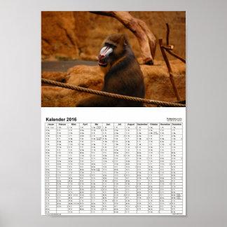 Pavian/Baboon calendar 2016 DINA4 Poster
