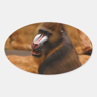 Pavian/Pavian Ovaler Aufkleber