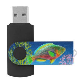 Pazifischer Korallenriff-Papageienfisch USB Stick
