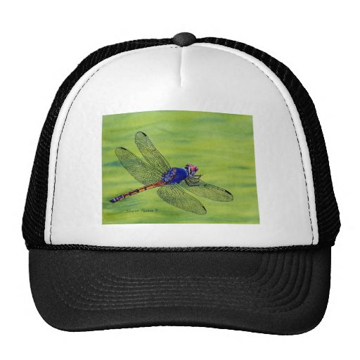 Peinture d'aquarelle de libellule casquettes