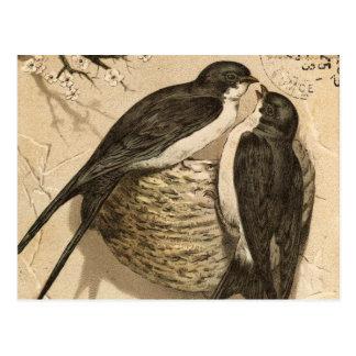 Peinture mignonne blanche noire vintage carte postale
