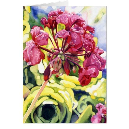 Pelargonie Grußkarte