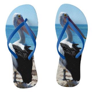 Pelikan auf Strand-Felsen, Flip Flops