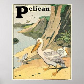 Pelikan-Geschichten-Buch-Alphabet Poster