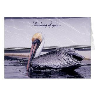 Pelikan-Gleiten Karte