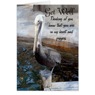 Pelikan-Liebe, - Occasions_ Karte