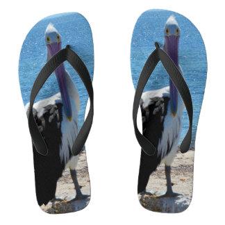 Pelikan mit dem Blick, Flip Flops