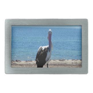 Pelikan mit dem Blick, Rechteckige Gürtelschnallen