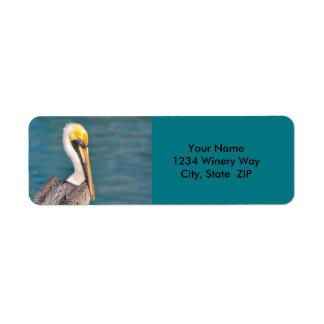 Pelikan-Porträt nah oben mit Ozean im Hintergrund Kleiner Adressaufkleber