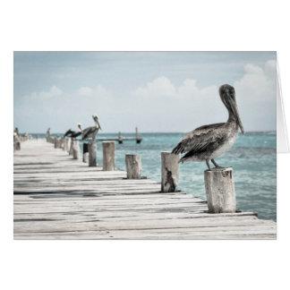 Pelikane auf dem Pier Karte