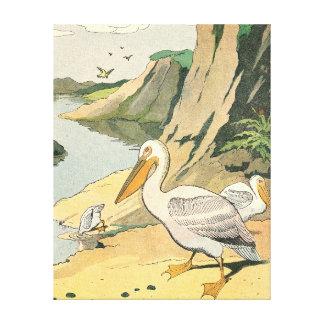 Pelikane auf einem felsigen Strand Leinwanddruck