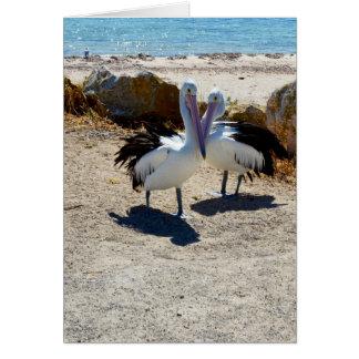 Pelikane in der Liebe, Karte