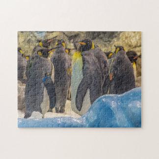 Penguins am Zoo-Fotopuzzlespiel