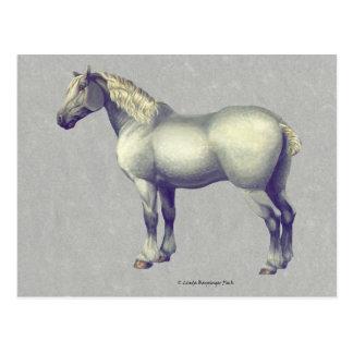 Percheron Pferdepferdeartige Kunst Postkarte