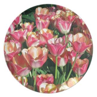 Perfekte Rosa-und Pfirsich-Tulpen Melaminteller