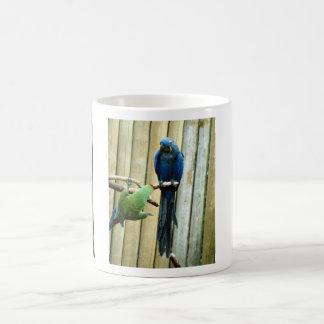 Perroquets espiègles mug blanc