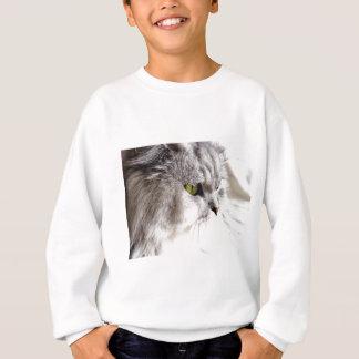 Persische Schönheit Sweatshirt