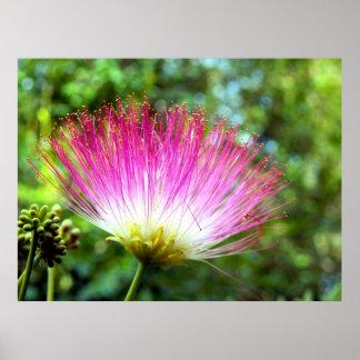 Persisches Silk Baum-Blumen-Plakat Poster
