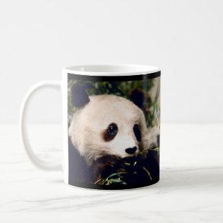 Personalisierte Tasse süßer PANDA, der AUF BAMBUS