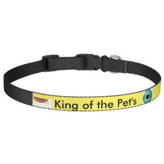 petcollar'er, Hund, Katze, Haustierhalsbänder