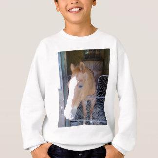 Pfadfinder Sweatshirt