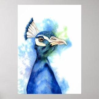 Pfau-Aquarell-Malerei Poster