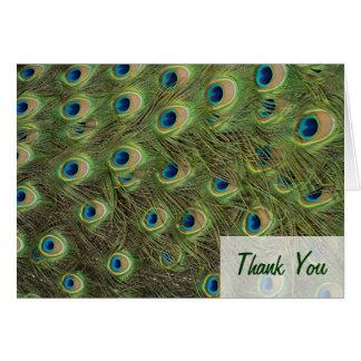 Pfau-Feder-Muster danken Ihnen Karte