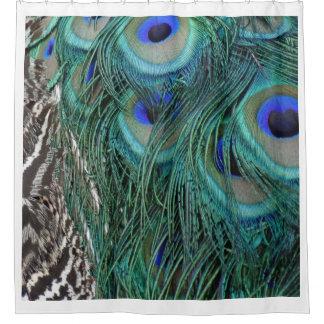 Pfau-Federn in Grünem und im Blau Duschvorhang