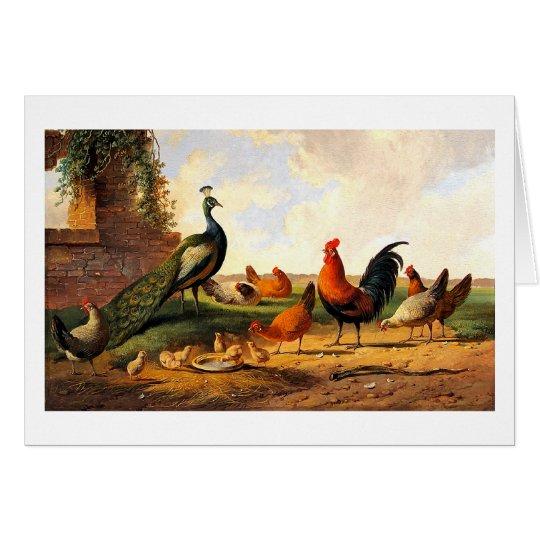 Pfau und Hühner Grußkarte