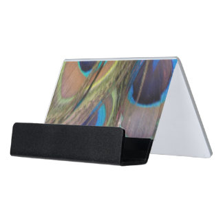 Pfau versieht hellen Schreibtisch-Visitenkartenhalter