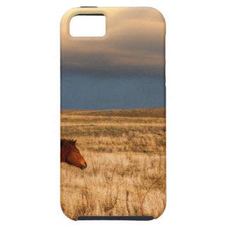 Pferd allein hülle fürs iPhone 5