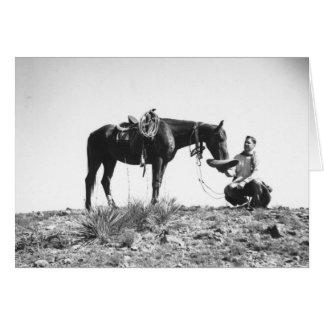 Pferd, das von einem Cowboyhut isst Karte