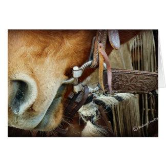 Pferd gebissen u. Bügel auf Pferd Karte
