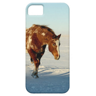 Pferd im Winter iPhone 5 Schutzhülle